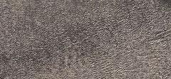 Metallic Cracked Leather