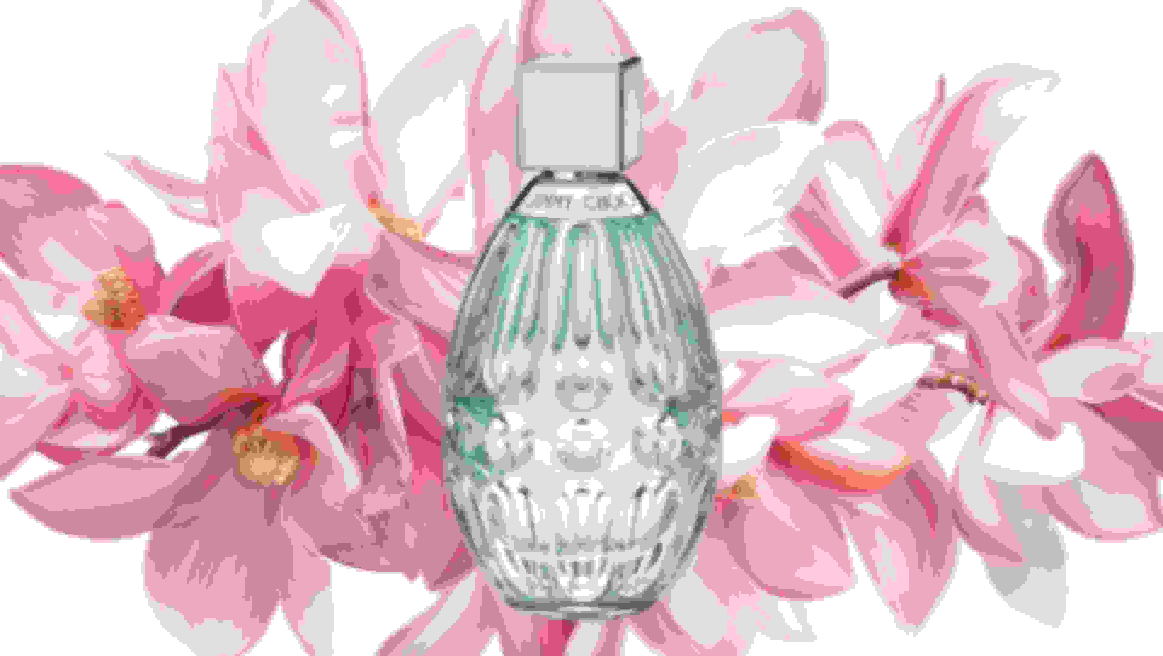 Jimmy Choo: Floral fragrance