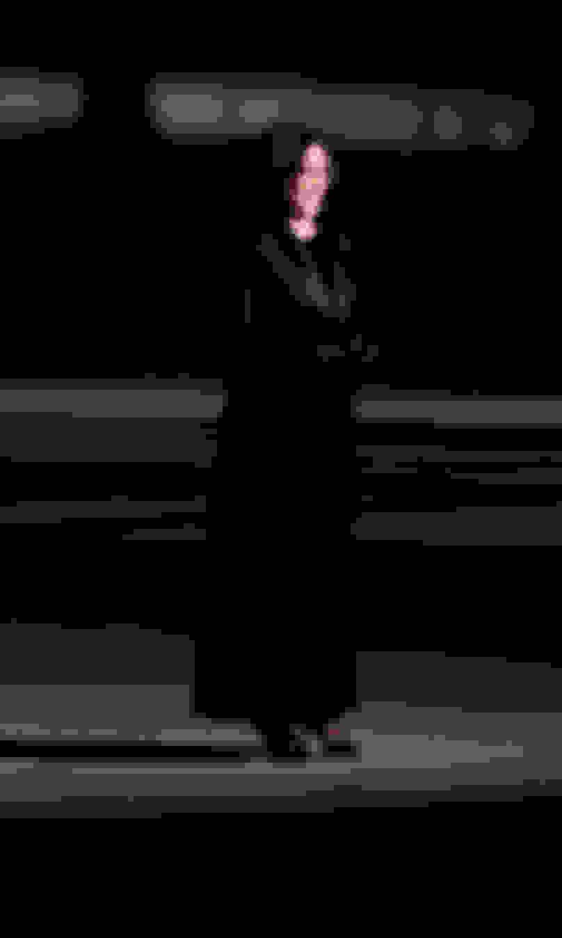 Vice President Kamala Harris wearing ROMY