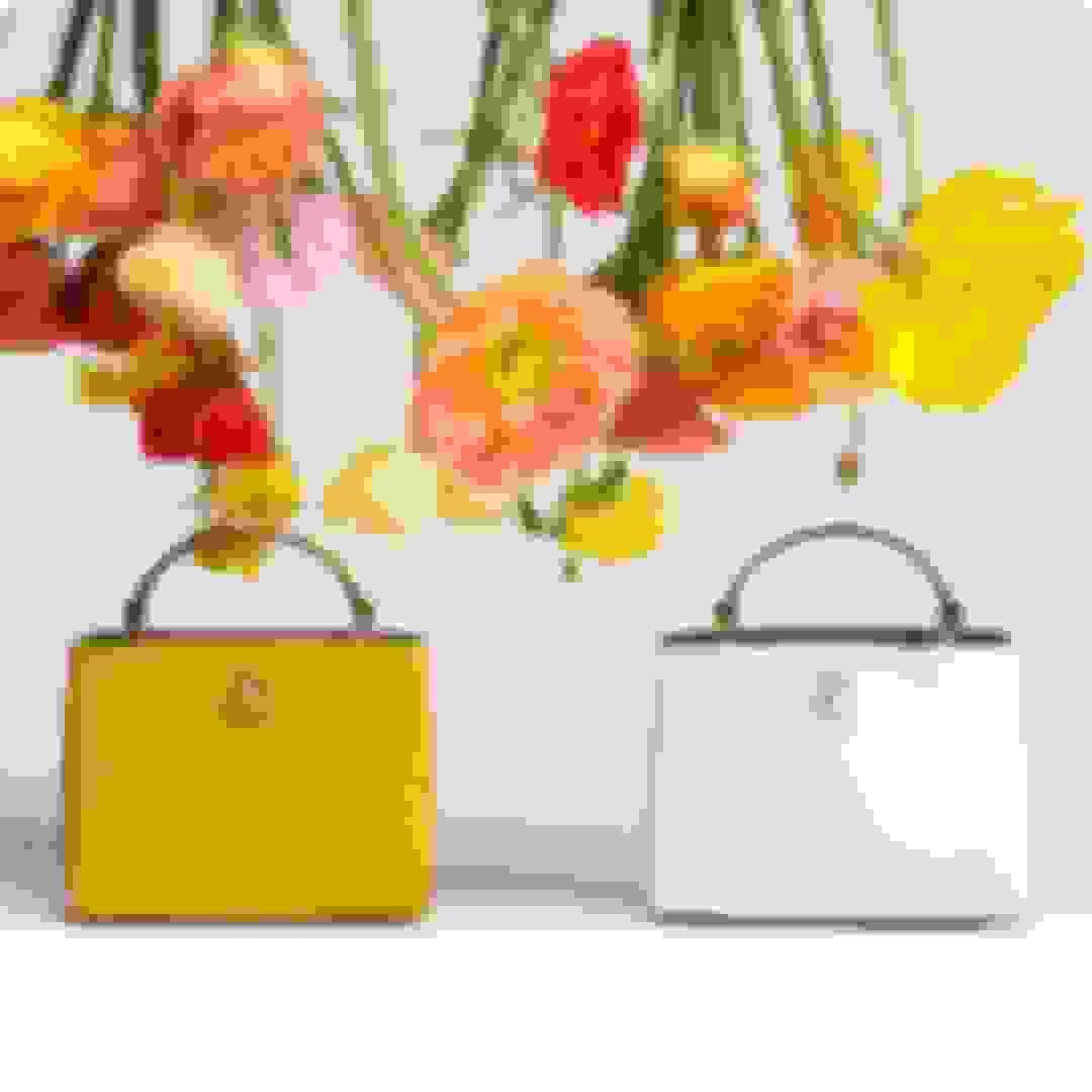 Jimmy Choo women's leather mini bags in 2 styles