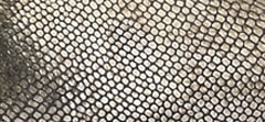 Metallic Lizard Print Leather