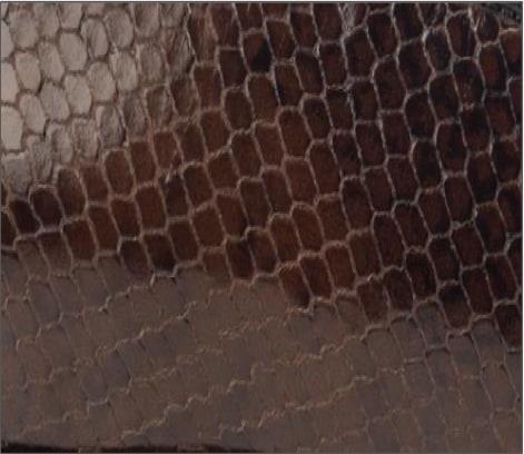 Shiny Snake Print Leather