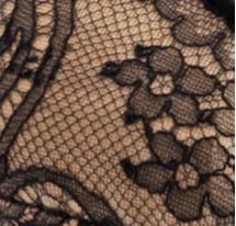 Chantilly Floral Lace