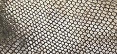 Metallic Lizard Print Leather
