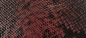 Snake Printed Leather