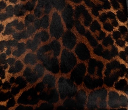 Degrade Leopard Print Pony